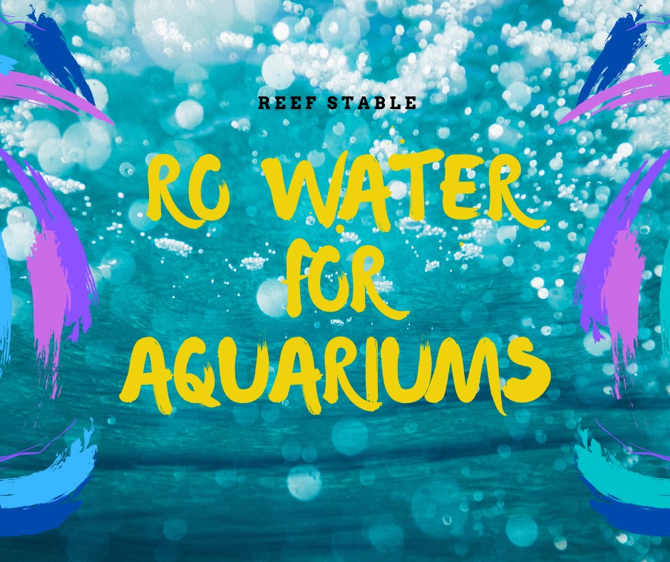 Reef Stable - Saltwater Fish Tank Blog - RO Water for Aquariums