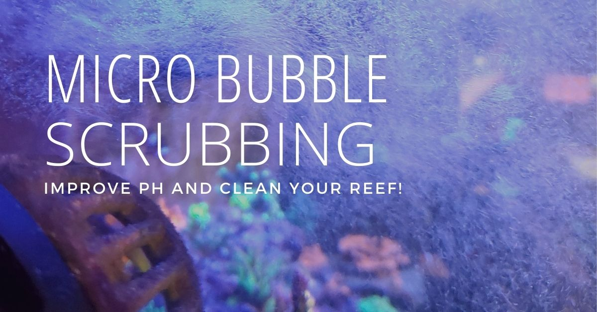 Reef Stable - Saltwater Fish Tank Blog - Micro Bubble Scrubbing in the Reef Aquarium